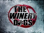 "The Winery Dogs: il video di ""Desire"""