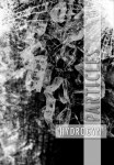 "Hydrogyn: ""Particles"" ora disponibile"